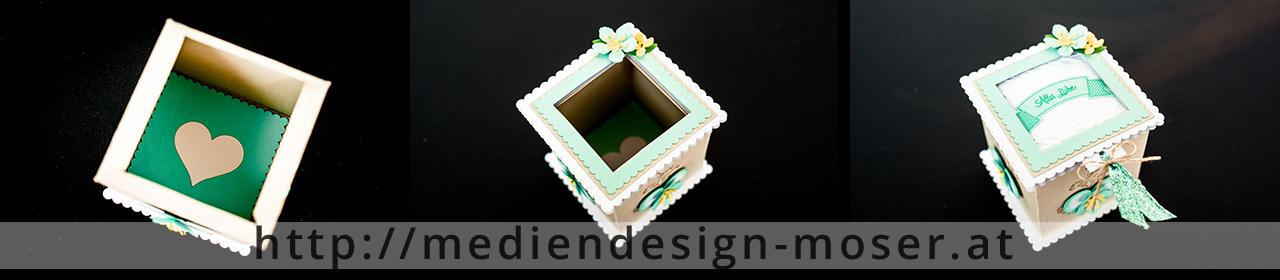 sd-box-anl05